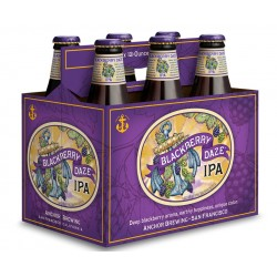Pack com 6 Cervejas Americanas Anchor Blackberry Daze IPA 355ml