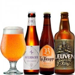 Kit Degustação Blond Ale com 3 Cervejas e 1 Copo