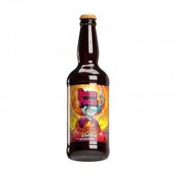 Cerveja Hocus Pocus Orange Sunshine 500ml