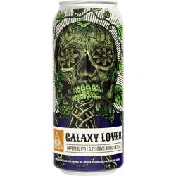 Cerveja Dogma Galaxy Lover 473ml